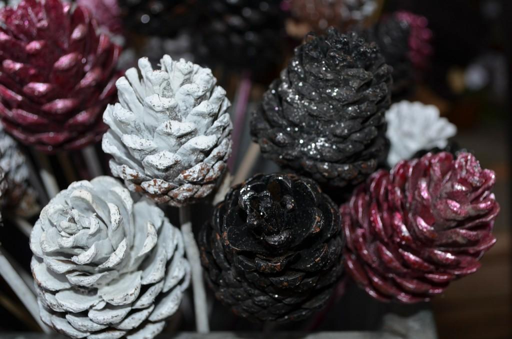 pine-cones-19702_1280